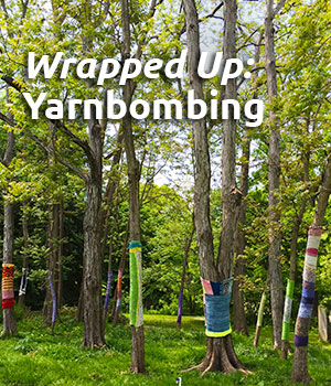 Wrapped Up:  Yarnbombing at the Morris Arboretum with Melissa Haims