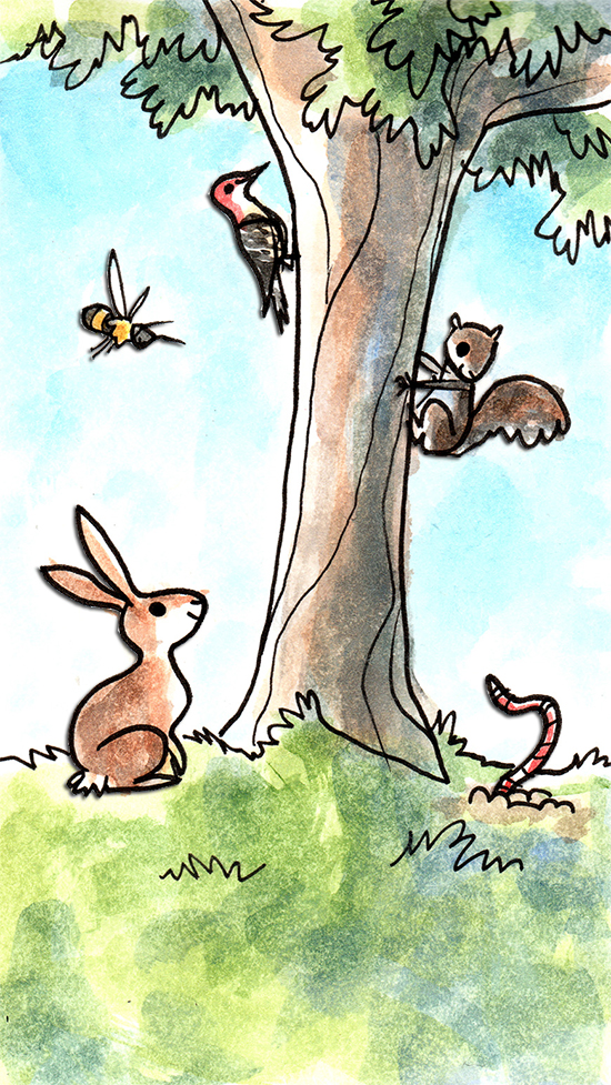 Drawing of animals around a tree. The animals are clickable to the different stories.