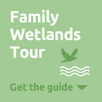 Kids Wetlands