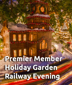 Premier Member Holiday Garden Railway Evening